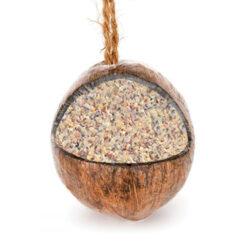Gevulde Kokosnoot-0
